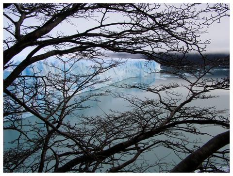 glaciar-perito