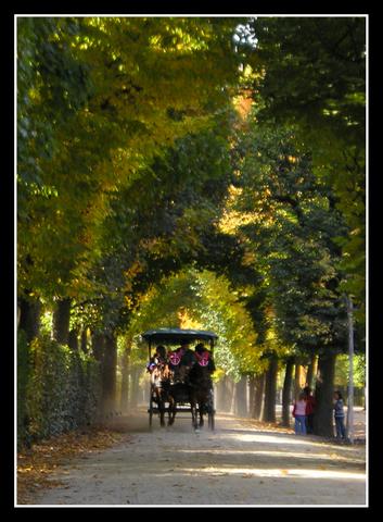 osterreich-viena-schonbrunn-carruaje
