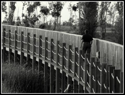 fotos-pasarelas