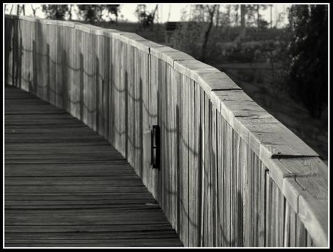 puentes-sombras