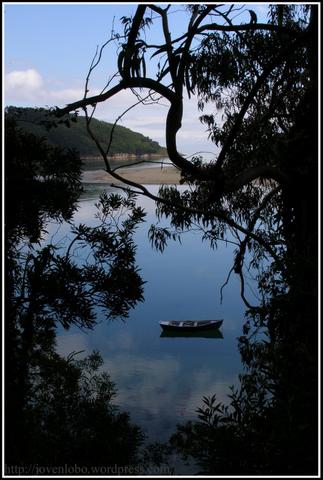 barcas-pescadores-barqueiro