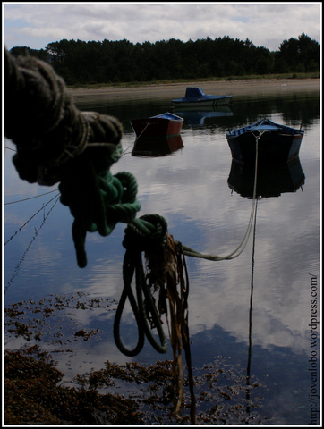 barcas-pescadores