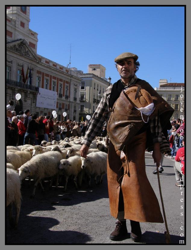 pastor-ovejas-trashumancia1