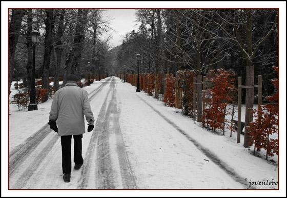 paseo-invierno