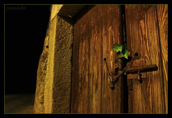 Hojas-Puertas-Madera