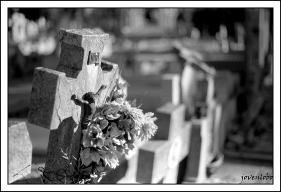 cementerio-madrid-almudena