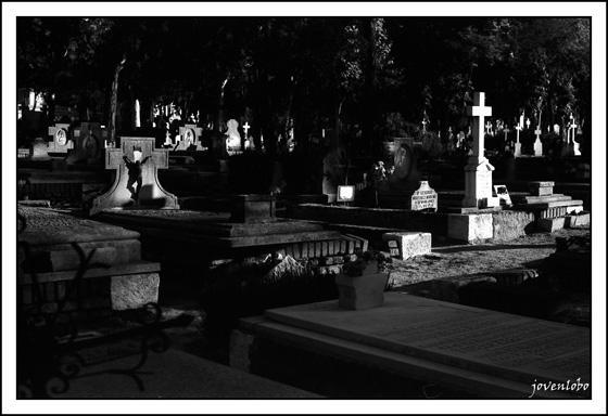 madrid-almudena-cementerio