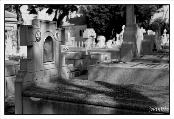 madrid-cementerio-almudena