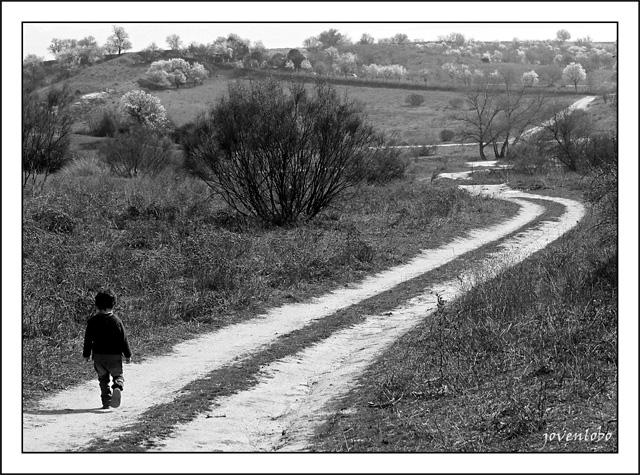 Niño-Camino-futuro