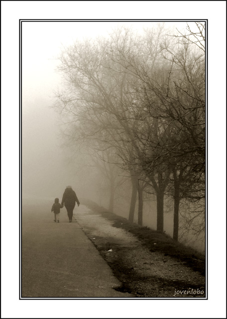 Camino-Niebla-Invierno