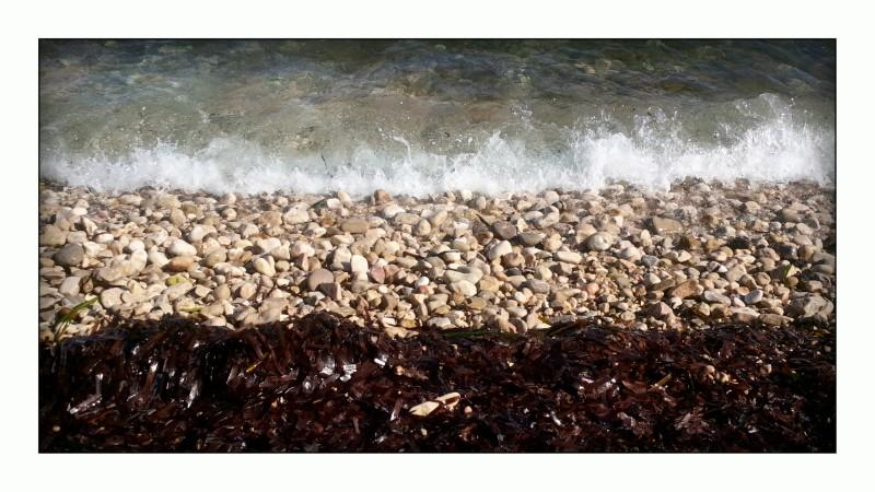 agua-piedras-algas-texturas