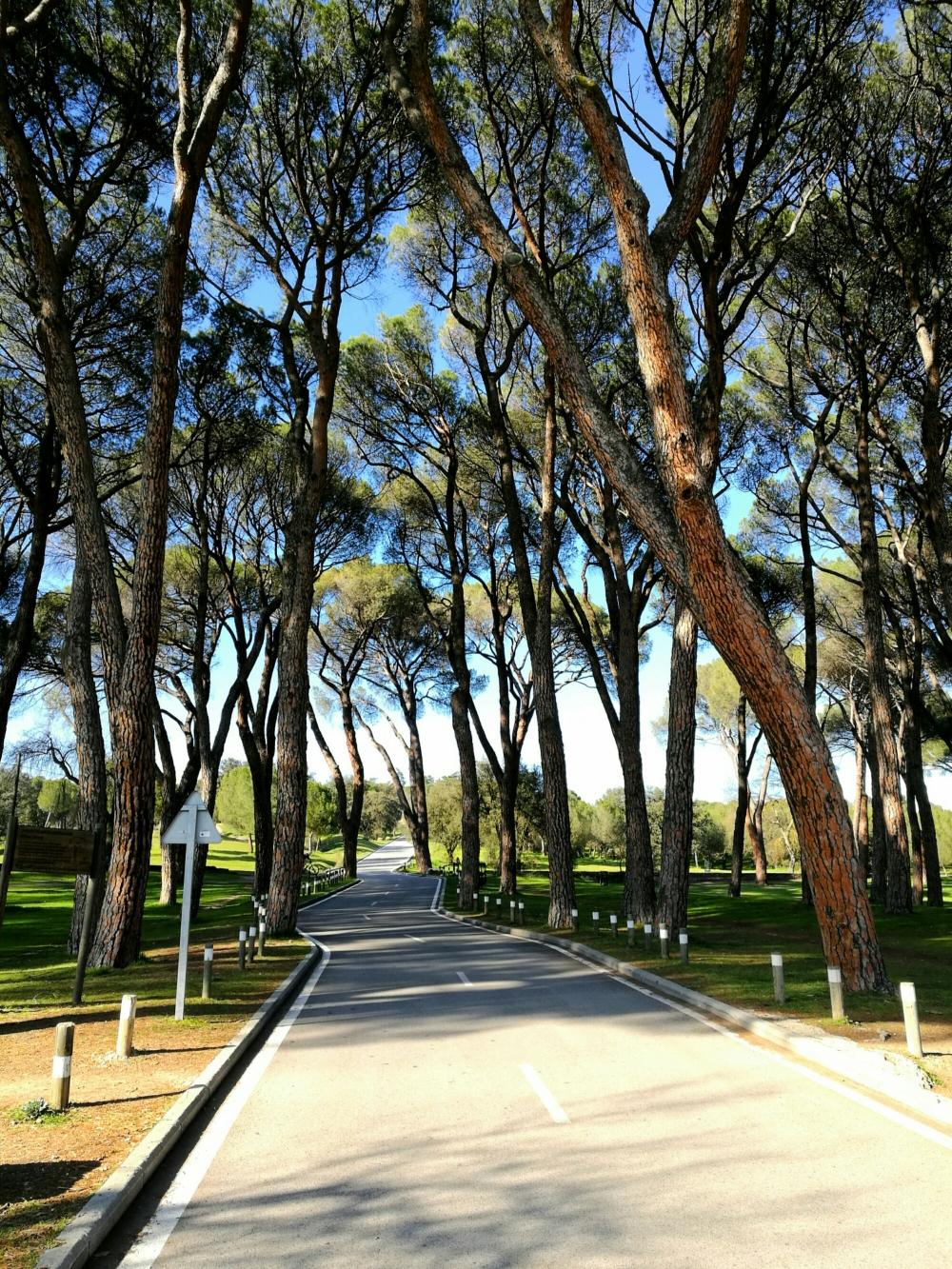 camino-casa-de-campo-Madrid